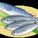 アジとイワシでうつ病予防!?魚を食べるとうつ病のリスクが半減するらしい!